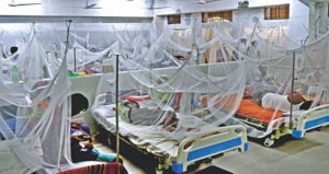 ডেঙ্গু আক্রান্ত হয়ে আরও ১২৩ জন হাসপাতালে